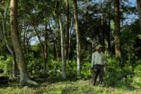 Человек, посадивший сам 65 Га в горной пустыне Индии (Видео)
