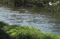 Источник загрязнения реки Бык был устраненИсточник загрязнения реки Бык был устранен