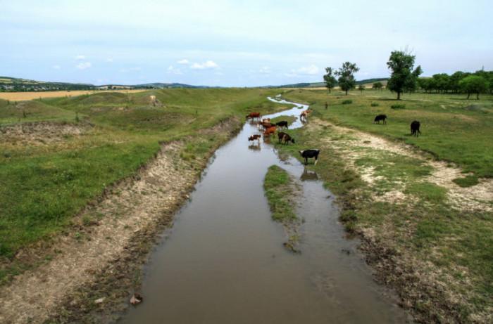 Высыхающие реки Молдовы