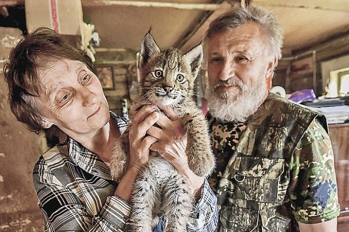 История Доктора Айболита! Ученый - биолог переехал в деревню и лечит диких зверей