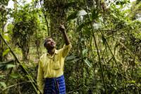 Джадав Пайенг - Человек, который посадил лес