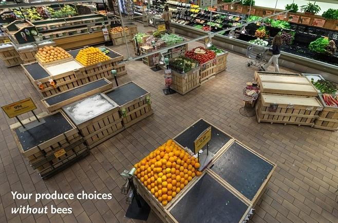 Мир без пчел: как выглядели бы полки магазинов?