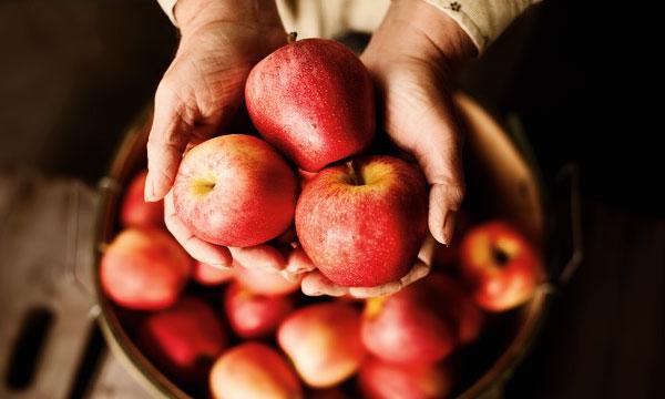 Молодильные яблоки существуют! А также груши, вишни и...
