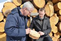 Ноу-хау сибирского ученого позволит вывести рынок лесозаготовок из тениНоу-хау сибирского ученого позволит вывести рынок лесозаготовок из тени