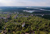 Съездить в Чернобыль, к разрушенному реактору, чтобы увидеть возрождение природы всего за 30 лет