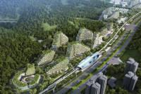 В Китае для борьбы с загрязнением строится целый лесной город (+Фото)