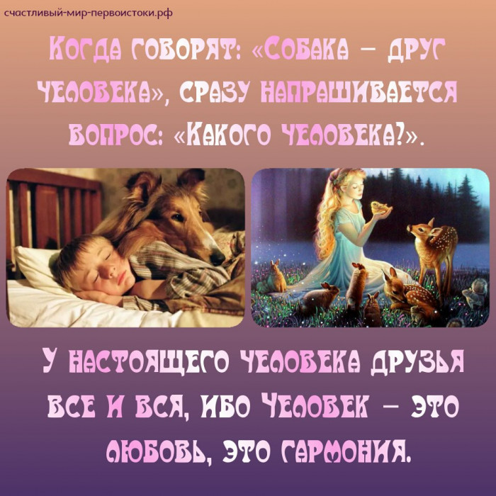 Дикие животные - друзья человека (Фото)