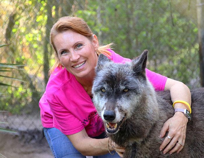 Они спасли волкособа от смерти и посмотрите, что из этого вышло (+Фото)