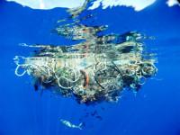 Остров пластика в океане достиг размеров самых больших государств в мире (Видео)