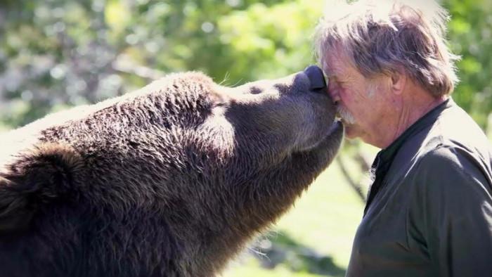 Самое душевное видео, о любви животных к людям (Видео)