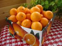 Чем обрабатывают магазинные апельсины?