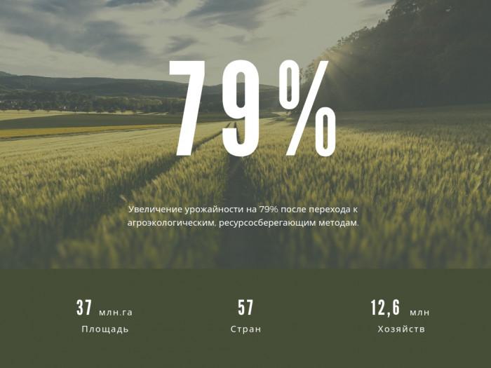 Неожиданный факты о продуктивности сельхозпроизводства