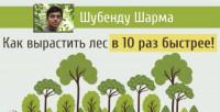 Как вырастить лес в 10 раз быстрее (Видео)