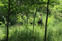 Волонтеры организаций Ecodava и -Потомки Штефана- спасают реку Бык
