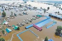Одно из крупнейших в истории наводнений произошло из-за вырубки леса