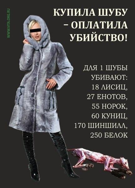 Мех за которым стоит жестокость и страдание! Хотя бы раз взгляните на эти фото...