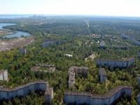 Чернобыльская зона сейчас стала уникальным местом. Посмотрите на эти фото!