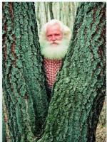 Как прокормить себя растительными продуктами леса