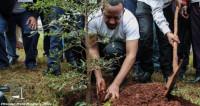 Эфиопия посадила 350 миллионов деревьев за 12 часов!