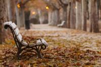 На скамейке в парке оставили продукты для нуждающихся (ФОТО)