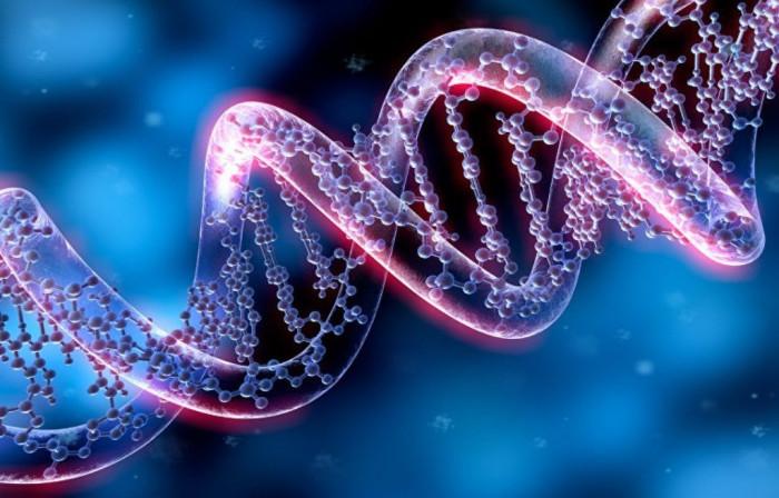 На свободу выпустили живое генетическое оружие