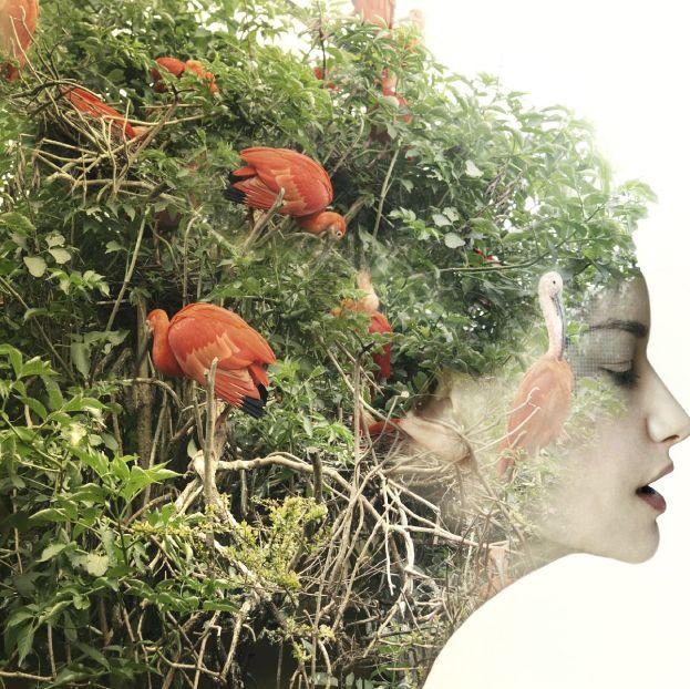 Растения разговаривают и обладают сознанием - научные исследования