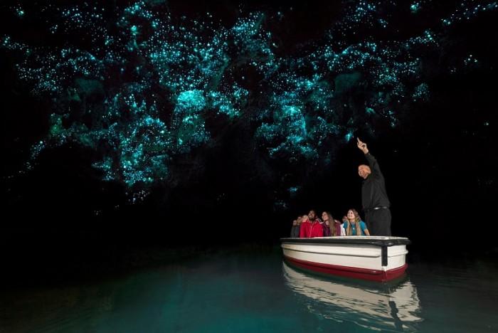 Вайтомо - пещеры светлячков в Новой Зеландии (+Фото)