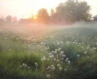 Реалистичные пейзажи художника Вячеслава Палачева (Фото)